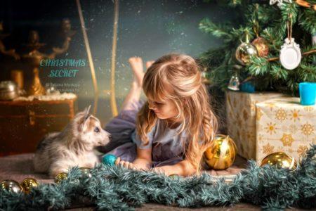новогодняя фотосессия со щенками хаски